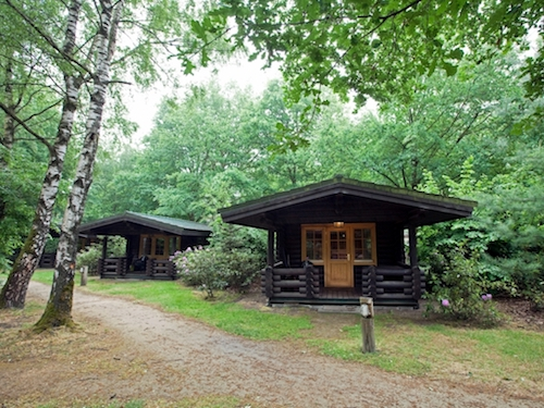 tiny house loghome