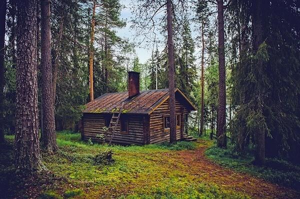 bed and breakfast in de natuur