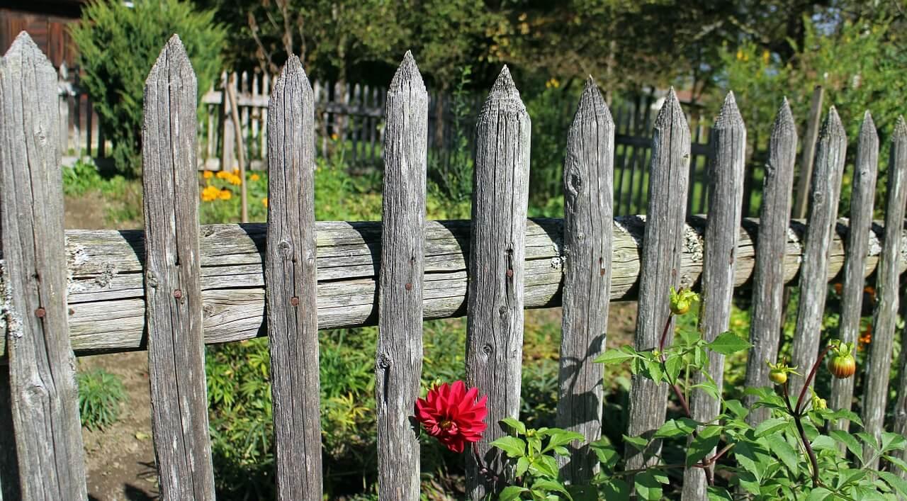 5 bijzondere vakantiehuisjes in Limburg met tuinomheining!