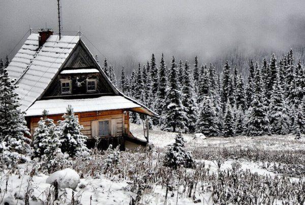 natuurhuisjes met kerst huren