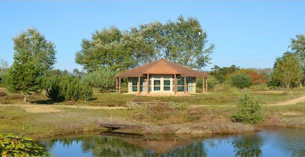 Romantisch natuurhuisje in Drenthe