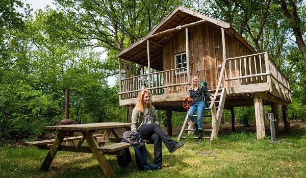 Camping met boomhut