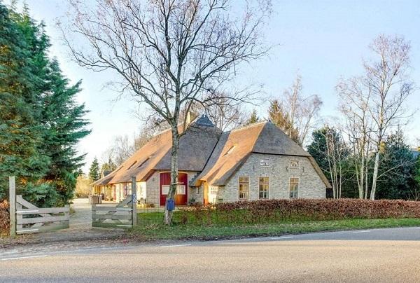 Natuurhuisje met prive zwembad Friesland