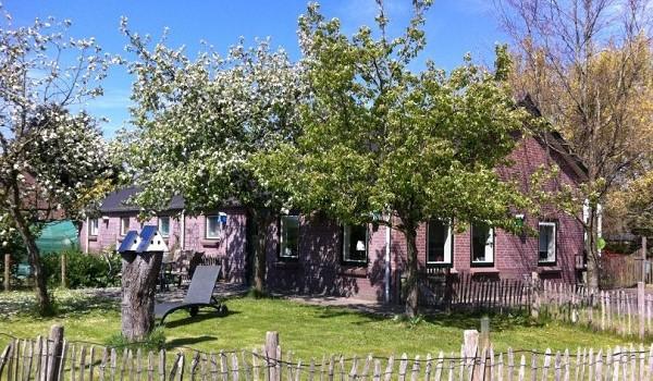 Rolstoeltoegankelijk natuurhuisje Utrecht